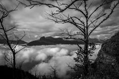 Y TÝ (trieu_van_194) Tags: landscape wb blackandwhite fog cloud sky mountain travelphotograper travel traveling mytravel mytrip myphoto vietnamlandscape vietnamtravel