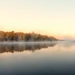 Morning Mist thumbnail