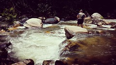 Fly fishing! (Edale614) Tags: fishing flyfishing river ashville northcarolina riverscape naturelovers nature