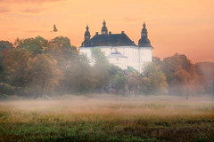 Welcome back (Birgitta Sjostedt) Tags: castle architecture building old museum tower facade window tree field bird migratorybird fog grass nature landscape environment sweden tourist tourism attraction birgittasjostedt mist sky ie magicunicornverybest