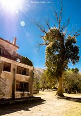 Hotel Eden (NatyCeballos) Tags: hoteleden eden abandonment abandono airelibre cielo ciel arbol sol reflejo rayos nikon celest celeste naturaleza