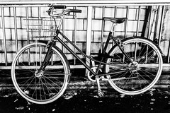 *** B I K E *** (*** Joe Wild ***) Tags: cityphotography bestoftheday picoftheday streetportrait portrait photojournalism travel sillhouette people instalike explore earth instaportraits streetlife fall streetphotography fashion style streetstyle blackandwhite bwphotography schwarzweis sony sonya7ii 50mm night nacht bw bnw blackwhite blacknwhite kontrast street strasse streetphoto photography fotografie zürich swiss schweiz zurich