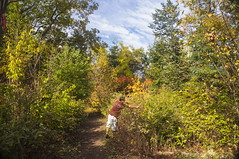 Fall 2017 - Urban Central Experimental Farm (lezumbalaberenjena) Tags: cef central experimental farm ottawa 2017 fall autumn automne autumne otoño otoñal lezumbalaberenjena