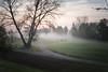 early morning mist - Olympus PEN E-PL8 (Andreas Voegele) Tags: olympus olympuspen penepl8 epl8 andreasvoegelephoto sun search mist light licht landscape pen earlymorningmist
