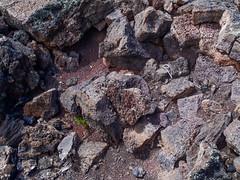 589-14-P9141277 (vgwells) Tags: sedona arizona grand canyon national park scottsdale montezuma castle jerome verde railroad sunset crater wupatki