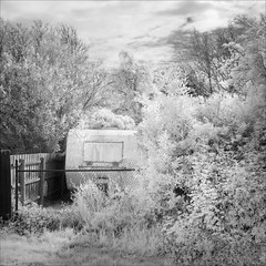 ferntree-gully-0972-ps-w (pw-pix) Tags: backyard backyards yard caravan dirty decayed disused weathered faded grass weeds mesh chainlinkfence cyclonewirefence fence trees garden plants shrubs clouds sky bw blackandwhite monochrome sonya7 irconvertedsonya7 850nminfrared ir infrared path pathway trail fernycreektrail upperferntreegully easternsuburbs outereast melbourne victoria australia peterwilliams pwpix wwwpwpixstudio pwpixstudio