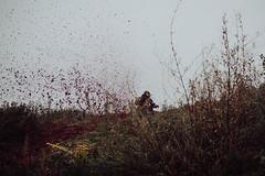 diggin´ the dirt   l   2017 (weddelbrooklyn) Tags: motorrad motorradrennen motocross dreck matsch onkeltomshütte dreckaufwühlen hobby zweirad rennen motocrossrace race racing motorbike dirt mud diggingthedirt nikon d5200 35mm