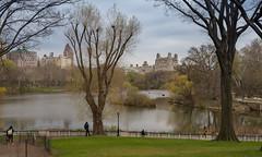 62397-New-York (xiquinhosilva) Tags: 2016 centralpark lake manhattan nyc newyork newyorkcity park therambleandthelake usa unitedstates us