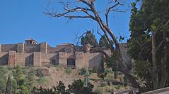 20171029_152616_HDR (uweschami) Tags: spanien espania malaga urlaub stadt alcazaba gibralfaro santaiglesia museopicasso plaza hafen mittelmeer