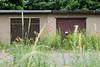 1808 Alte Garagen mit Holztüren - hohes, blühendes Wildkraut hat die Einfahrten überwuchert - Bilder aus Torgau / Elbe. (stadt + land) Tags: stadt torgau bilder sehenswürdigkeiten fotos rundgang freistaat sachsen elbe reformation reisefotografie stadtportrait impressionen alte garagen holztür hohes blühendes wildkraut einfahrt überwuchert