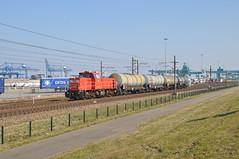 DBC 6429 Waalhaven Rotterdam (Peter Boot) Tags: nederland havenspoorlijn waalhaven rotterdam goederenvervoer dbc 6429 trein dieselloc ketelwagens ketelwagentrein lyondellbayer cargo