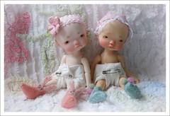 DSC05919 (Lindy Dolldreams) Tags: irrealdoll bjd ery babies diapers twins girls jiajiadoll