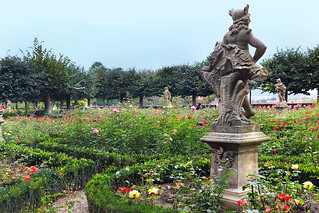 Bamberg Residenz - the autumnal rose garden, explore