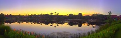 Coronado Morning (Thanks for over 2 million views!!) Tags: iphonecamera iphonese panaramic panoramic panaroma pano disneyscoronadospringsresort water waltdisneyworld wdw reflections sky sunlight sunrise scenic disney disneyworld chadsparkesphotography centralflorida trees palmtrees