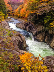 Autumn Waterfalls (moaan) Tags: mutsu aomori japan jp waterfalls cascades river stream rapids autumn fall autumncolors fallcolors valley hagenvalley iphone iphone5 iphonegraphy travel travelphotography utata 2017