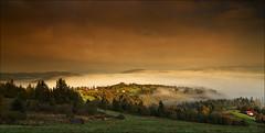 Zwardoń (witoldp) Tags: beskidy beskid żywiecki ślaski poland zwardoń sunset ochodzita rachowiec landscape karpathiansm słowacja granica tree field sky wood mountain