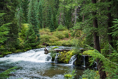 2017 Pac NW Crater Lk NP Area-2 (Michael L Coyer) Tags: parks nationalparks usnationalparks unitedstatesnationalparks lassenvolcanicnationalpark lassen lassenvolcanic lassenvolcanicnatlpark mountain mount wilderness forest