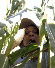 031 There Is No Way Out (saschmitz_earthlink_net) Tags: 2017 california temecula bighorsefeedandmercantile cornmaze orienteering laoc losangelesorienteeringclub corn