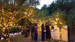 """Wedding Fairy lights • <a style=""""font-size:0.8em;"""" href=""""http://www.flickr.com/photos/98039861@N02/37724826596/"""" target=""""_blank"""">View on Flickr</a>"""