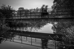 double speed of retirement life (k#OCZY#k) Tags: grass bridge river tree sky water welder monochrome bw blackandwhite clouds speed