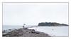Walking to Denmark (Eline Lyng) Tags: nature seascape coastline coast isle denmark larkollen norway autumn rain umbrella rainyday people hightide fuji fujixt2 xt2 16mm wideangle