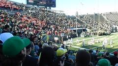UO/Utah football (LarrynJill) Tags: uo ducks eugene or football sports cheer cheerleaders