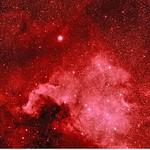 NGC7000 thumbnail