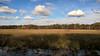 Fish Lake Wildlife Area (@Michael) Tags: crexmeadows gear lumia640 nokia places wisconsin