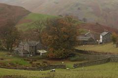Martindale Hamlet, The Lake District (Henry Hemming) Tags: martindale ullswater hamlet farm hills lake district fell remote rural autumn england cumbria unspoiled lonely alone hidden englandinphotosbestofenglandenglandphotographyphotosofengland