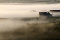 Nasbinals, Lozère (lyli12) Tags: brume mist aubrac lozère landscape paysage languedocroussillon campagne nature leverdesoleil france nikon d7000