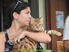gio_k2_2017_08_380 (giordano torretta alias giokappadue) Tags: abetone bengala gastone gatto kat