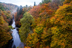 Autumn colours on River Garry (ola_er) Tags: autumn colours morning mist golden red seasons change river bridge scotland nikon sigma wood landscape tree water forest