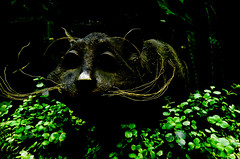 The Cat's Whiskers (Steve Taylor (Photography)) Tags: cat catswhiskers cheshirecat aliceinwonderland art digital sculpture black lowkey green brown metal asia singapore plant foliage flora leaves face gardensbythebay flowerdome