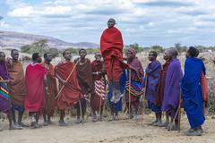 Maasai (Michael Zahra) Tags: africa african arusha tanzania tribe tribal dance jump male female groom bride colour color maasai masai culture tradition safari travel tourism canon custom costume warrior farmer nilotic maa luo sara kalenjin dinka nuer shilluk ateker bantu samburu turkana jumping singing sing song