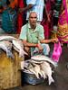Big Fish for Sale (debra booth) Tags: 2017 grandbazaar india pondicherry pudicherry puducherry copyrighted wwwdebraboothcom
