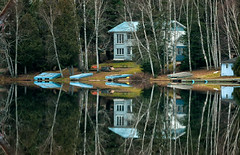 'Monday, Monday ... can't trust that day' (Canadapt) Tags: house lake reflection birch trees mirror dock morning calm keefer canadapt bluemonday