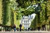 DSC02429sf (M_Johns) Tags: paris overseaweddings mjohns jardin des tuileries pyramide du louvre 杜樂麗花園 羅浮宮 巴黎 巴黎婚紗 巴黎婚攝