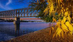 Old-Railway-and-Gazela-Bridge-Sava-River-Belgrade-Fall (Predrag Mladenovic) Tags: belgrade sava river ada bridge newrailway gazela sunset twilight reflections citylights
