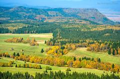 Table Mountains (Grzesiek.) Tags: tablemountains górystołowe czechy polska czech poland autumn landscape fall jesień