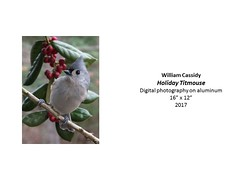 """Holiday Titmouse • <a style=""""font-size:0.8em;"""" href=""""https://www.flickr.com/photos/124378531@N04/37106284923/"""" target=""""_blank"""">View on Flickr</a>"""