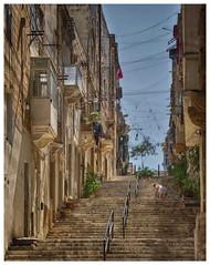 The Malta Experience (5) (kurtwolf303) Tags: senglea malta streetphotography strasenfotografie stairs stiegen stufen gasse person hdr buildings gebäude olympusem1 omd systemcamera mirrorlesscamera mft kurtwolf303 europe city stadt urban unlimitedphotos urbanlifeinmetropolis 250v10f reisefotografie travelphotography topf25 500v20f topf50 750views topf75 900views