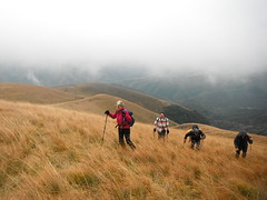 Stara Planina 111 (jecadim) Tags: staraplanina hiking trekking serbia srbija mountain fog foggy nature clouds autumn grassland pasture