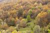 Otoño de nuevo (elosoenpersona) Tags: otoño fall hayedo monasterio de hermo asturias cangas narcea trees forest elosoenpersona