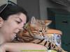 gio_k2_2017_08_376 (giordano torretta alias giokappadue) Tags: abetone bengala gastone gatto kat
