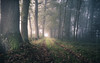 a light there... the day begins (Florian Grundstein) Tags: greatphotographers greatestphotographers