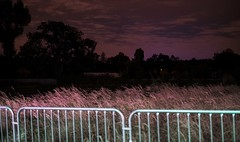 NIGHT GIFTS (Minoroffmonk) Tags: nightphotography nighttime night nightshot digital dreamy dream fisheyelemag fujifilm fujixseries fujifeed france photography photo photographer phroommagzine pink paris plant nature outside ifyouleave darkbloom darkness somewheremagazine series takemagazine green atmosphere ambiance