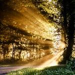 An explosion of light thumbnail