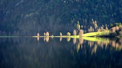 Trær ved vatn - - Trees by lake (erlingsi) Tags: no reflection spegling movatn sunnfjord noreg europe scandinavia spiegel spegel speil mirroring light lys luz laghi reflejo movatnet explored haust høst autumn exquisite