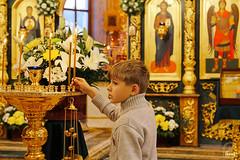 Преподобного Сергия (19)