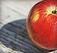 Macro mondays...Sidelit... (nushuz) Tags: apple macro mondays sidelit orchard macromondays picnictable applelessthan2inches light sun rustic texture red